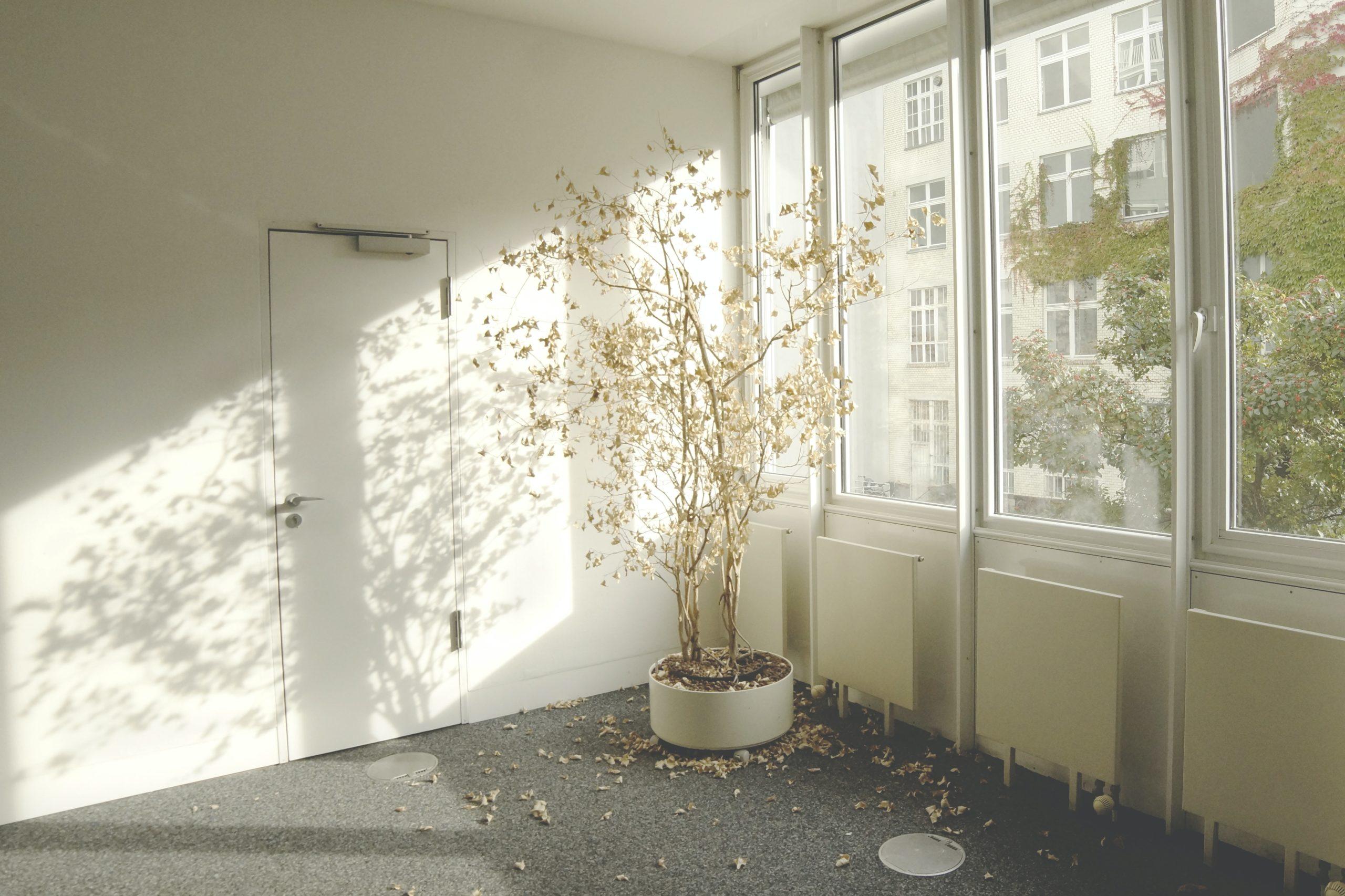 マンダリンオリエンタル バンコクの部屋は大人気!その魅力を解説します
